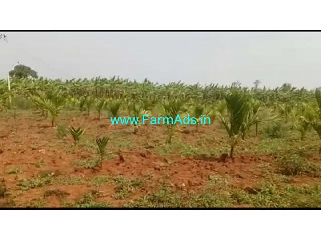10 Acres Arecanut with Banana Plantation for Sale near Sagara