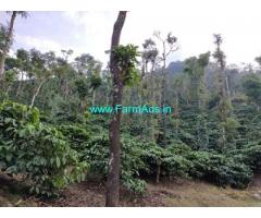 106 Acre well maintained coffee estate sale in Sakleshpur