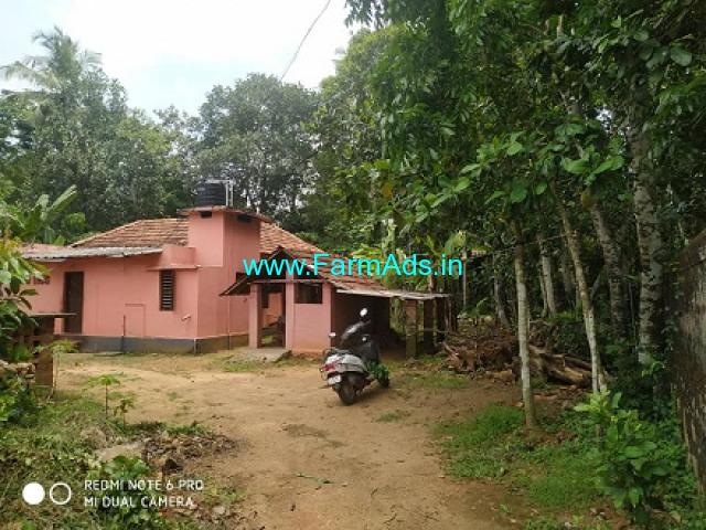 22 Cent Plot and old house for sale at Kumbanad