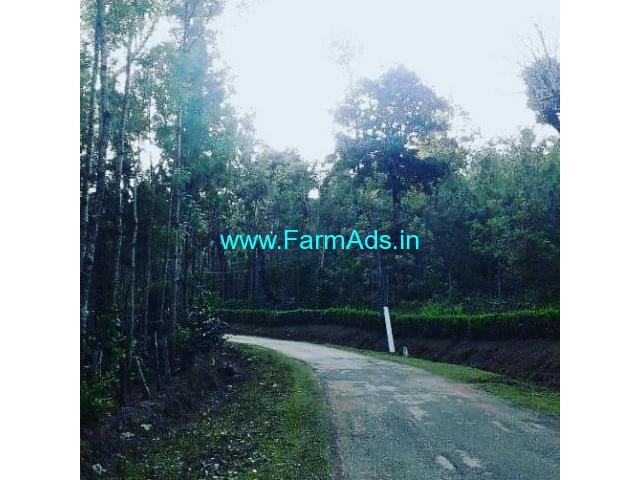 100 Acre Coffee Estate For Sale in Sakleshpur