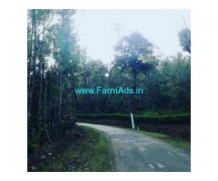 100 Acre Coffee Estate For Sale in Sakleshpur