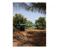 32 Acres Agriculture Farmland for sale Kethapally