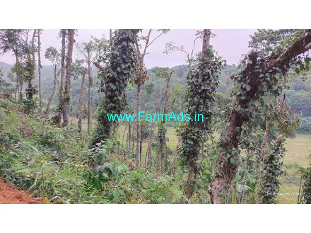 3.5 acre farm land for sale in Mudigere