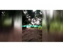 40 Acres Agriculture Land For Sale In Tirupathi