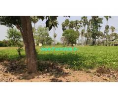 1.5 Acres Farm Land For Sale In Vepancheri