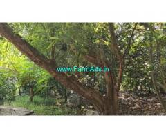 30 Acres Agriculture Land For sale in Pavunjur