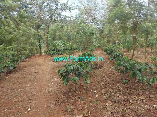 50 Acres Farm Land For Sale In Sakleshpura