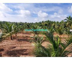 4 Acres Farm Land For Sale In Mallandur