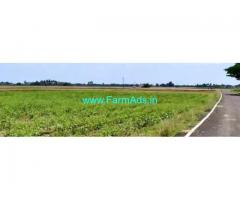50 Acres Agriculture Land For Sale In Villupuram