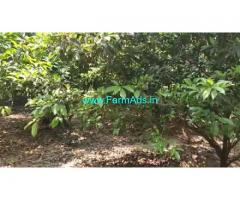 66 Cents Agriculture Land For sale in Edaikazhinadu
