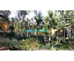7 Acres Farm Land For Sale In Chikkamagaluru