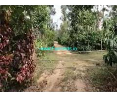 15 Acres Agriculture Land For Sale In Mudigere