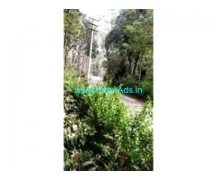 1.5 Acres Farm Land For Sale In Chikkamagaluru