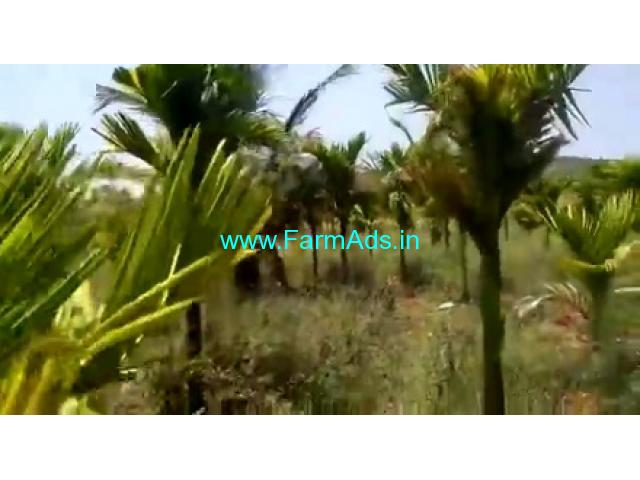 7 Acres Agriculture Land For Sale In Chikkamagaluru