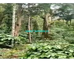 30 Acres Agriculture Land For Sale In Balehonnur