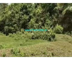 2.13 Acres Farm Land For Sale In Mudigere