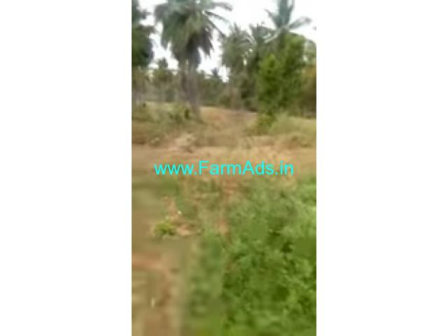 10 Acres Agriculture Land For Sale In Kadur