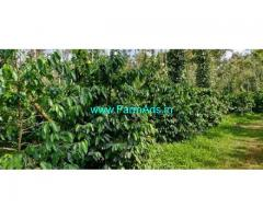 400 Acres Farm Land For Sale In Chikkamagaluru