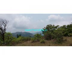 6 Acres Farm Land For Sale In Sakleshpur