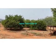 100 Acres Agriculture Land For Sale In Kanigiri