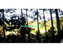 3 Acre 6 Gunta Farm Land For Sale In Chikkamagaluru