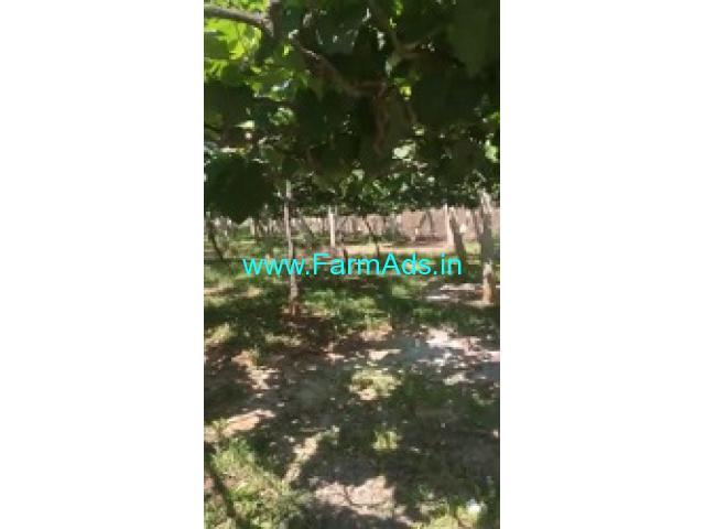5 Acres Farm Land For Sale In Doddballapura,46km from Majestic