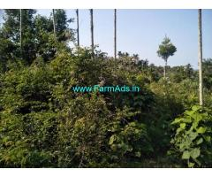 2 Acres Farm Land For Sale In Chikmagalur