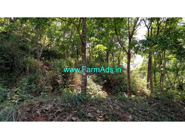 1.75 acres agriculture land for Sale at Nellyady