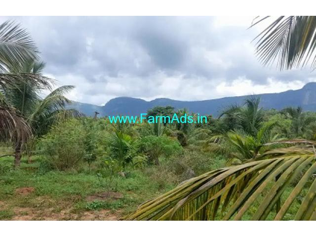 30 Acres Agriculture Land For Lease In Avanoor