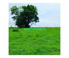 2 Acres Agriculture Land For Sale In Sakleshpura