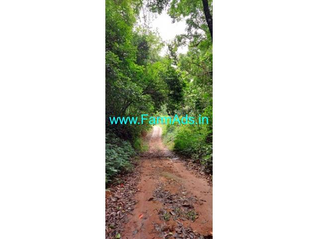 4 Acres Farm Land For Sale In Sakleshpur