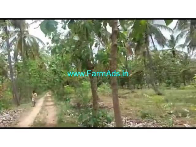 19 Acres Farm Land For Sale In Nanjangudu