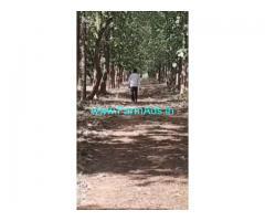 330 Acres Agriculture Land For Sale In Guduru