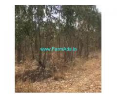 2 Acres Agriculture Land For Sale In Sakleshpur