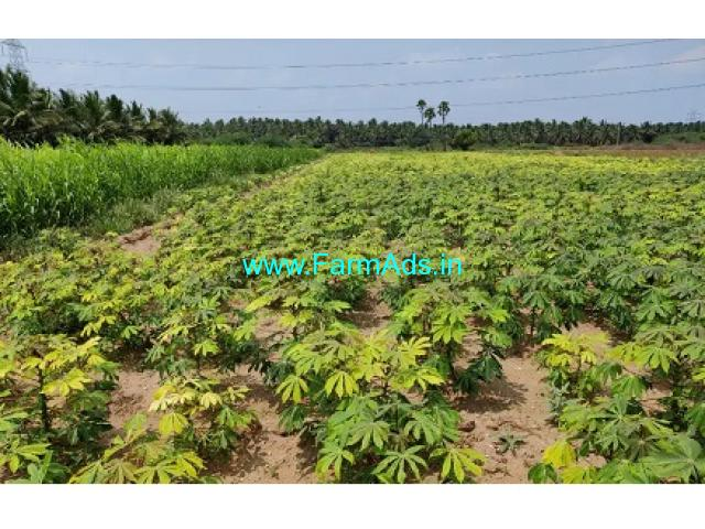 5.50 Acres Farm Land For Sale In Mahalingapuram