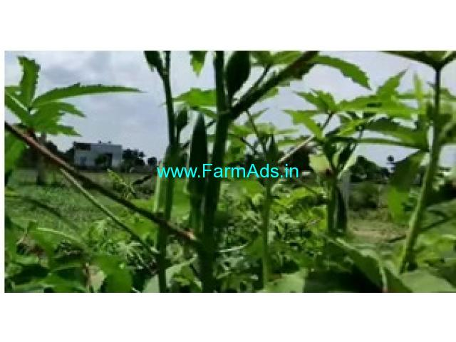 23 Cents Farm Land For Sale In Chengalpattu