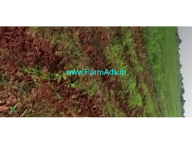 50 Acres Agriculture Land For Sale In Macherla