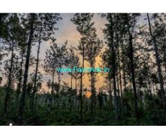 19 Acres Farm Land For Sale In Hassan