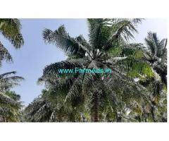 4 Acres Farm Land For Sale In Illuppnagaram