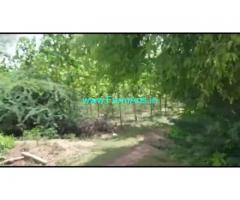 9 Acres Agriculture Land For Sale In Holepura
