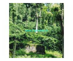 60 Acres Agriculture Land For Sale In Chikkamagaluru