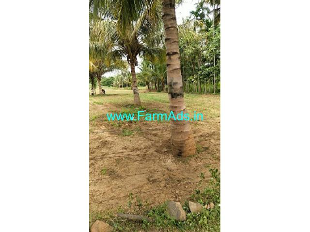 Arkavathi river attached 30 gunta coconut farm land sale near Kanakapura