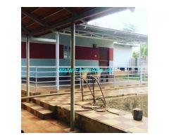 4.19 Acres developed farm house with Green house for sale in Doddballapura