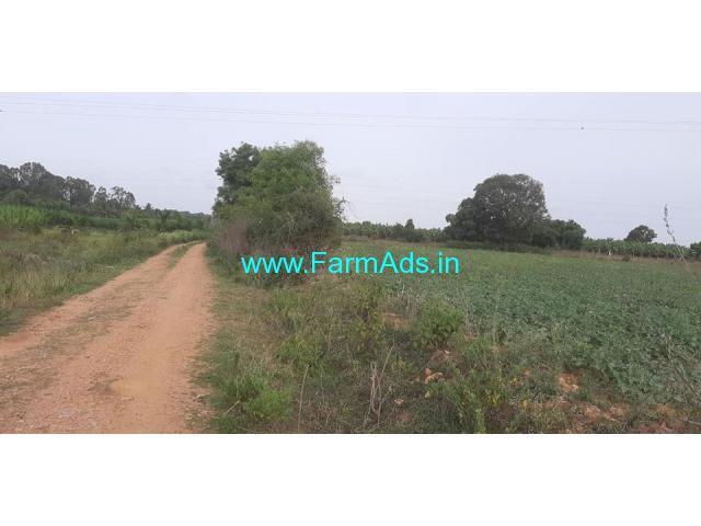 2.20 acres farm land for sale in Mysore