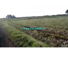 13 Acres Agriculture Land For Sale In Harivaram