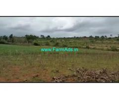 20 Acres Farm Land For Sale In Bettdamarahalli