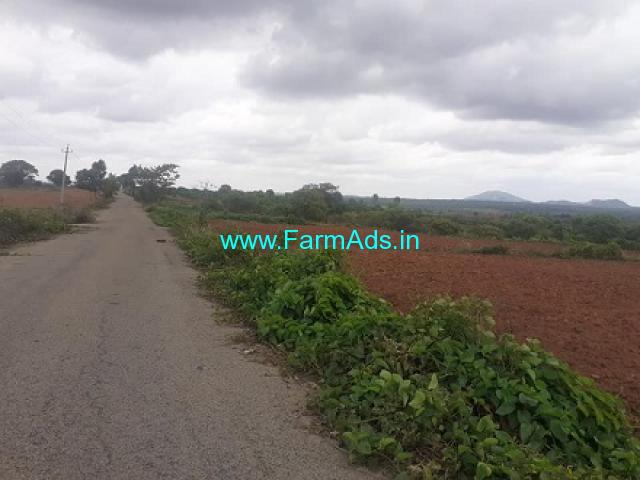 5 Acres Agriculture Land For Sale In Kamana Agrahaara