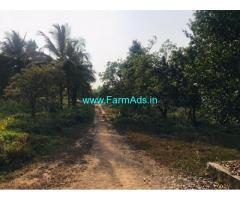 4.8 Acres Agriculture Land For Sale In Udupi