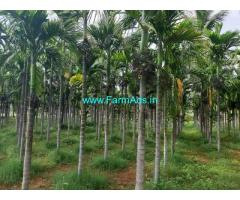 3.32 Acres Arecanut plantation for Sale at Aaranakatte