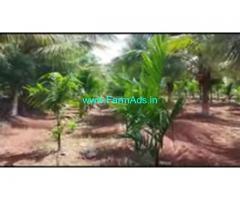 6 Acres 10 Gunta Farm Land For Sale In Chamarajanagar